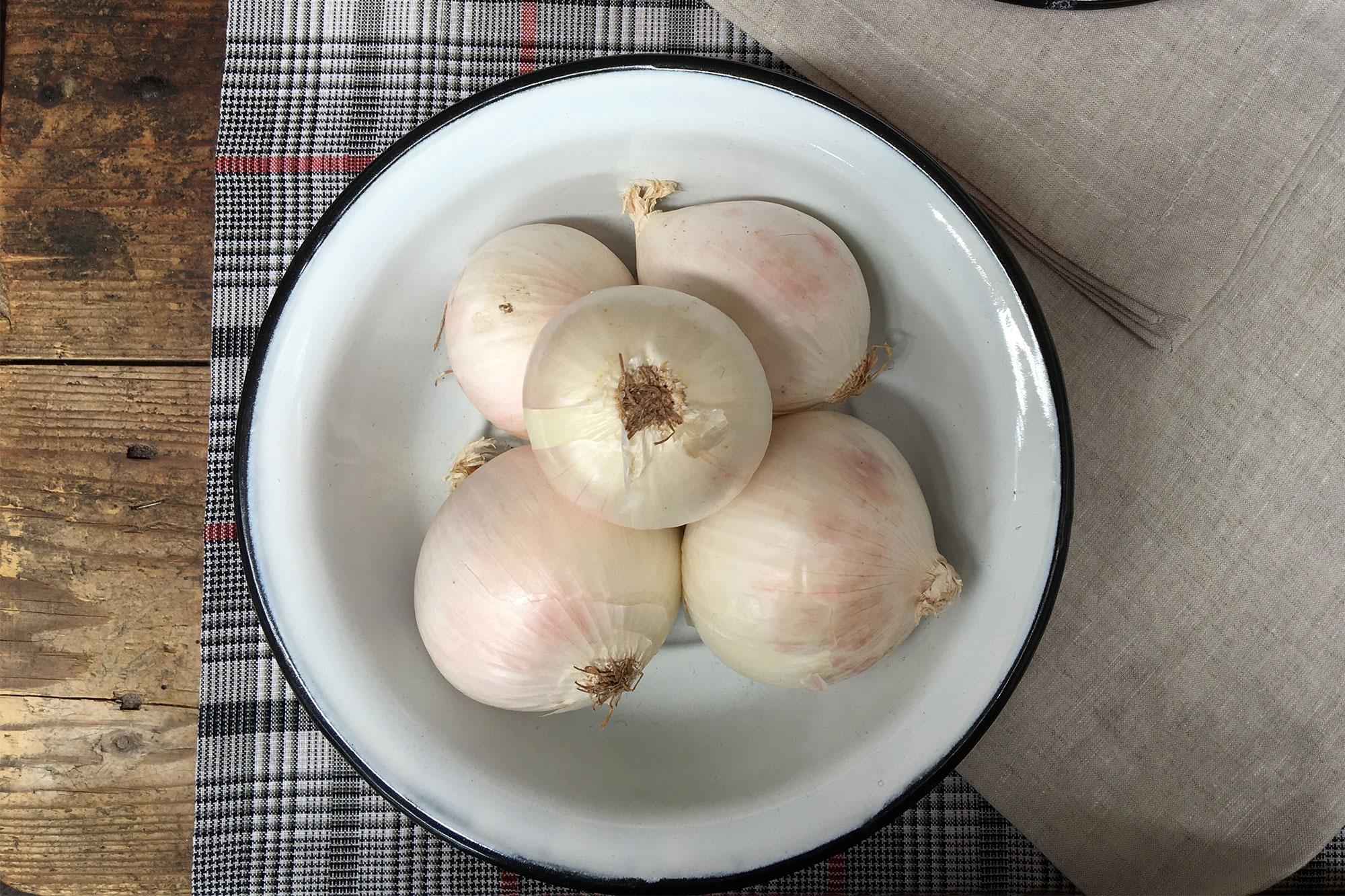 Piatto cipolle